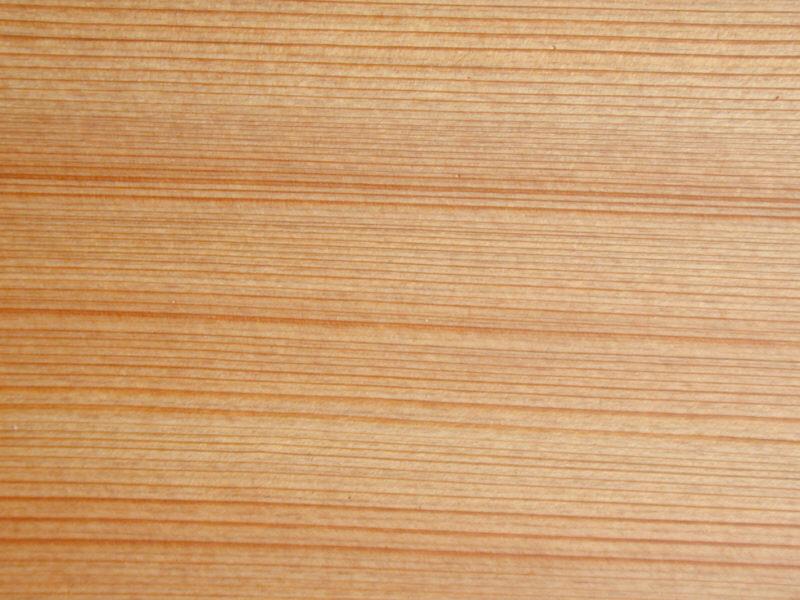 Hardwood for boat building (6/6)